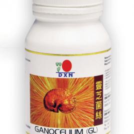 GL90 ganoderma GL gyogygomba kapszula