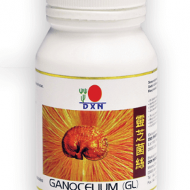 GL90 Ganoderma Gyógygomba Kapszula (90 kapszula x 450 mg)