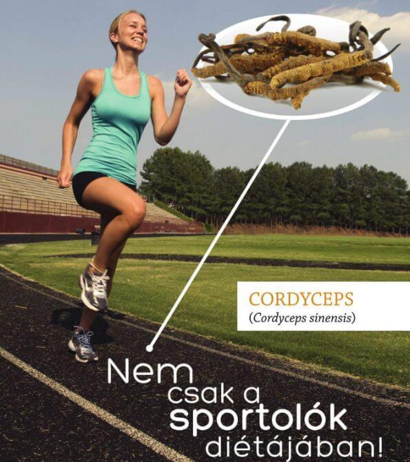 Cordyceps por 30 g (Hernyógomba) 2
