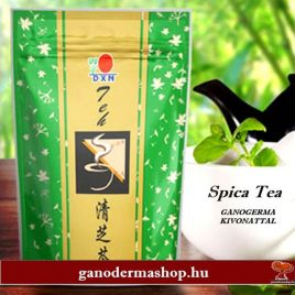 SPICA TEA GANODERMA KIVONATTAL