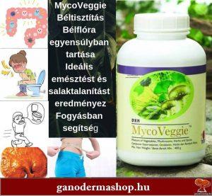MycoVeggie gyógynövénykeverék gyógynövények, gombák, zöldségek, gyümölcsök, valamint kínai zöld tea és spirulina keveréke