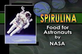Miért használja a NASA a spirulinát