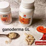 ganoderma GL pecsétviaszgomba kapszula