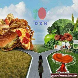 Gyorséttermi ételek vagy egészséges táplálkozás ? ganodermashop.hu
