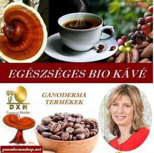 ganodermashop.hu Lingzhi coffee 3 in 1