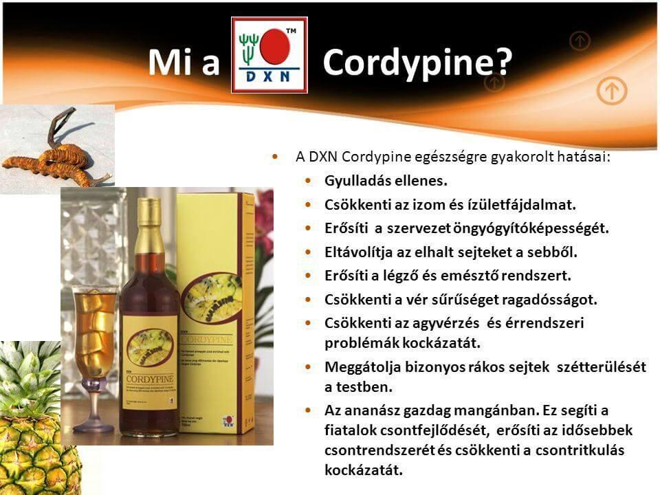 Mi a cordypine hatása