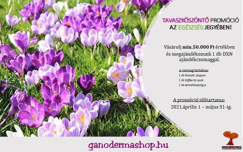 1 Szuper Tavaszi Akció a DXN Ajánlatából!